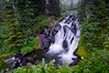 Paradise River Waterfall<br /> Mt. Rainier National Park