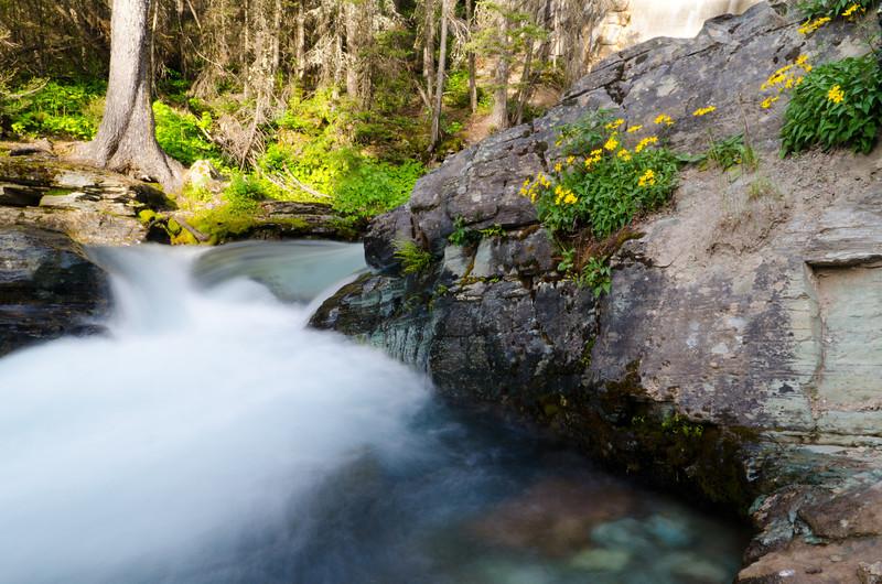 Summer River<br /> Glacier National Park, Montana