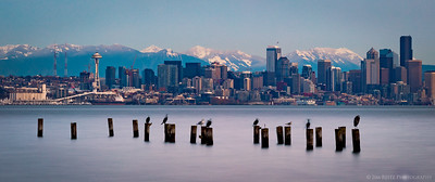Put a bird on it, Seattle!
