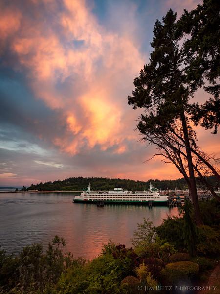Some nice sunset color just now - on Bainbridge Island, Washington.