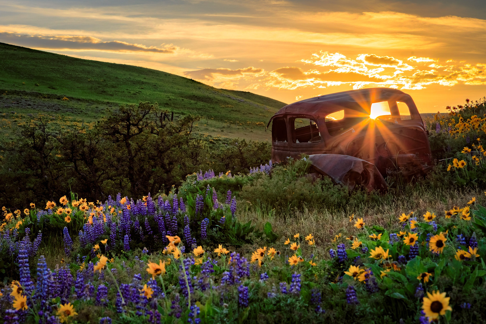 """Sunset at the """"rusty car"""" in Dalles Mountain Ranch."""