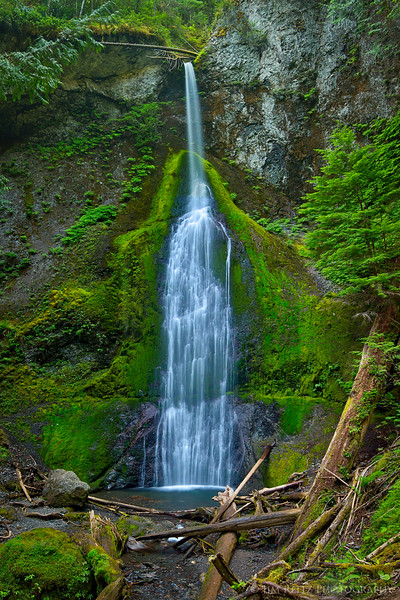 Marymere Falls near Lake Crescent, in Olympic National Park