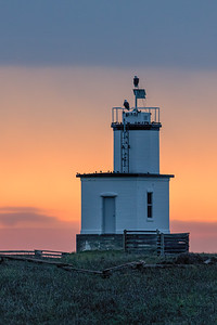 A couple of bald eagles have found a nice perch on top of the Cattle Point lighthouse on San Juan Island