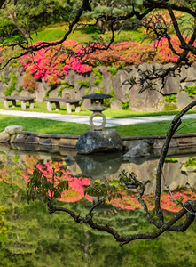 More reflections - Seattle Japanese Garden