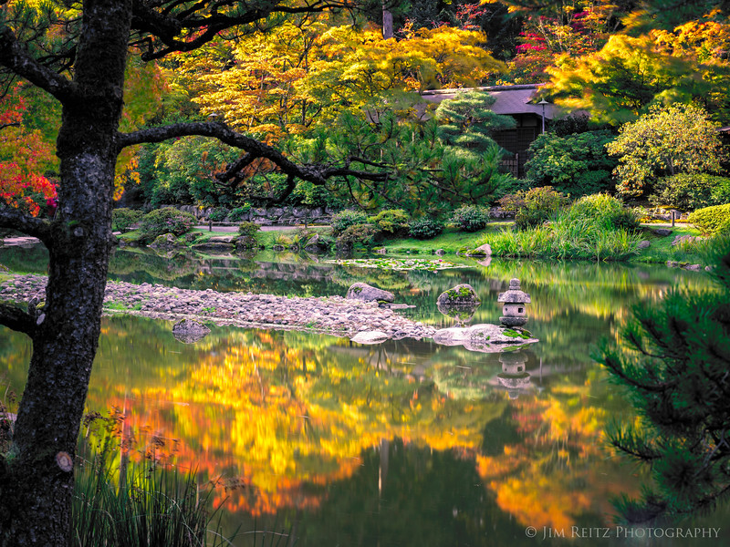 Early autumn colors at the Seattle Japanese Garden this morning.