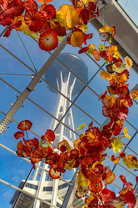 Chilhuly Garden & Glass exhibit at Seattle Center.