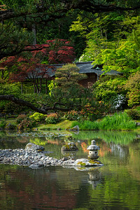 Seattle Japanese Garden in spring time.