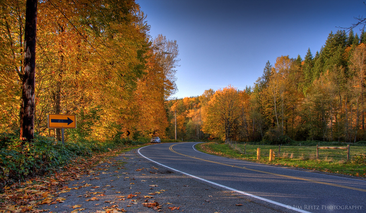Maples line the road.