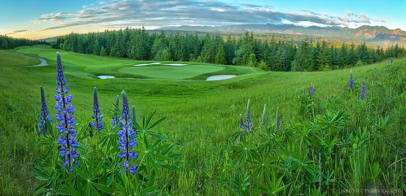 The 12th hole at TPC Snoqualmie Ridge golf course, near Snoqualmie, Washington