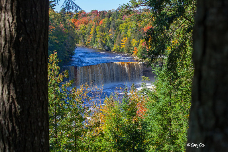 Tahquamenon falls in fall color!