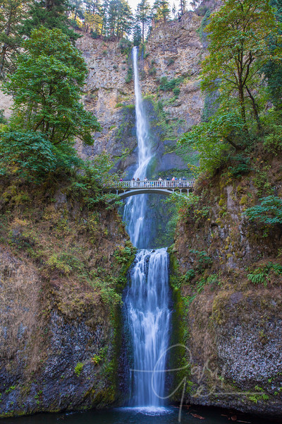 Multnoma Falls - Portland Oregon one year after the major fire that burned through this area and the falls- September 2018