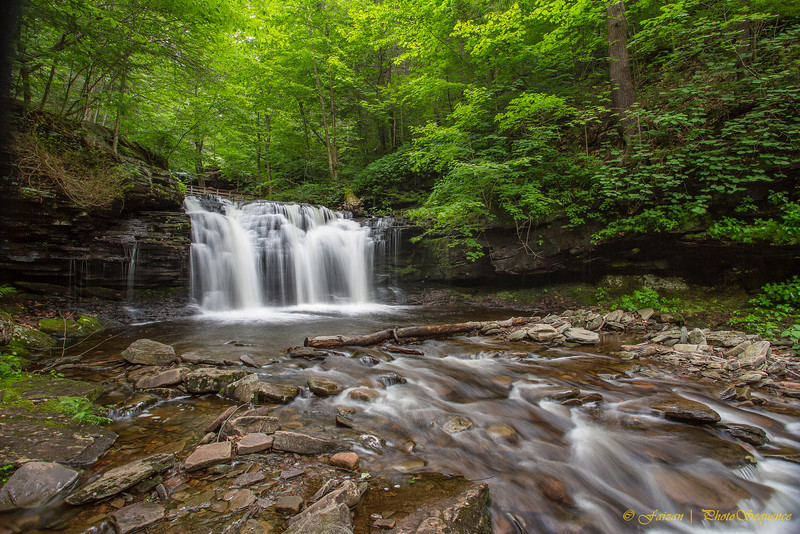 Nature - Ricketts Glen State Part