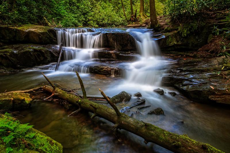 Beauty of Wildcat Creek