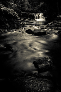 Evening in the Hollow at Dunloup Creek Falls