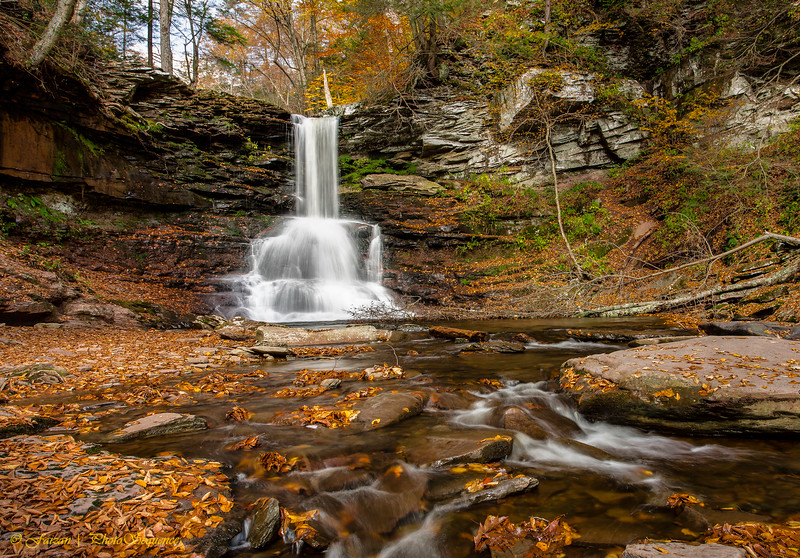Sheldon Harrison Fall