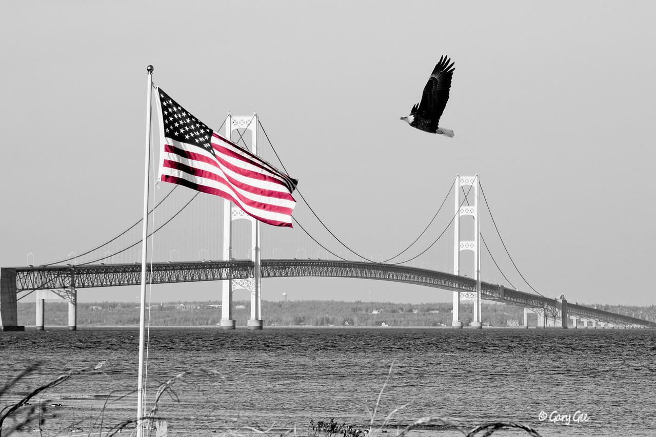 Mackinaw Bridge, American flag and Bald Eagle