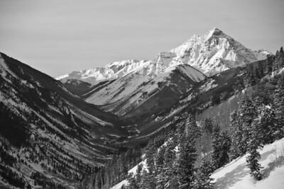 Aspen scene from a ski race