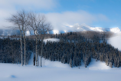 Mt Emmons and Aspen trees