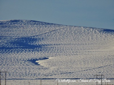 snow patterns 1