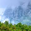Cascade Mists
