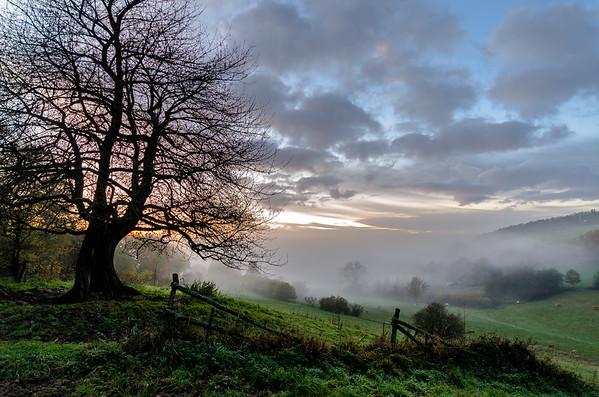 Langwieden Nebel