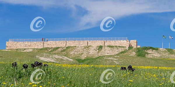 Israelite Fortress at Tel Arad in Israel