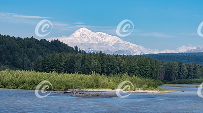 Denali Mount McKinley in Alaska behind a River and Forest