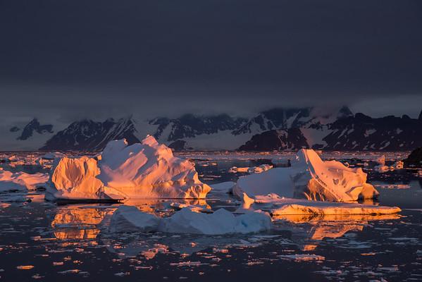Icebergs under the midnight sun, Marguerite Bay, Antarctica