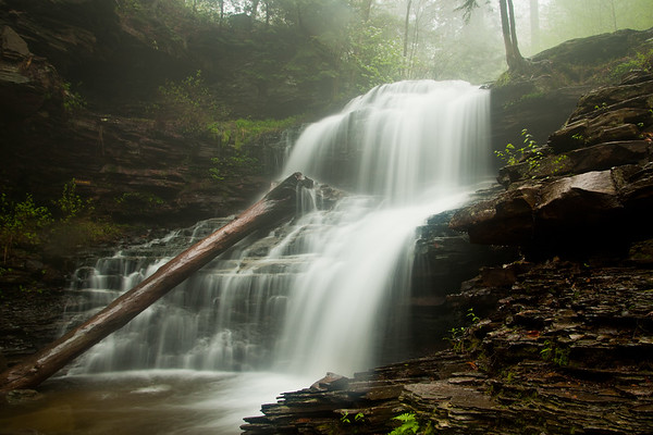 Misty Ricketts Glen