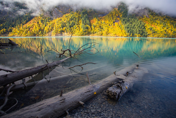 Fall at Kinney Lake along the Berg Lake World Heritage Trail below Mount Robson, British Columbia Canada Sept 2015