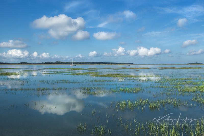 Marsh Reflections.