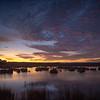Sky and Marsh