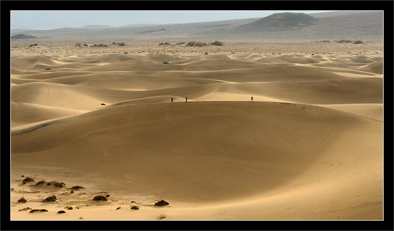 Morning Walk on Sand Dunes