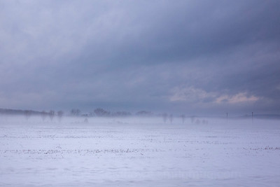 Snowswept field