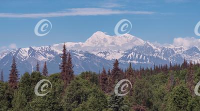 Denali Mount McKinley in Alaska on a Rare Clear Summer Day