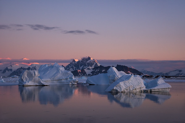 Icebergs in twilight, Marguerite Bay, Antarctica