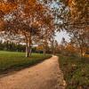 Padilla Trail