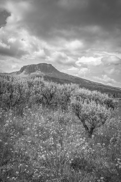 Black Butte BW, Gravelly Range, MT