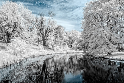 Springgrove_Infrared_0071-HDR