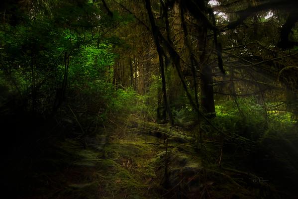 Path light