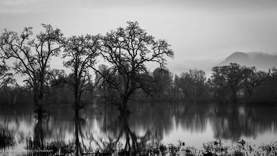 Misty Sunrise Reflections