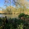 Alongside the River Kennet