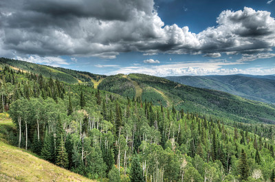 A Summer Day on Mt. Werner Limited Edition by Kat Walsh Photography