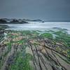 Oman - Salalah - Mirbat seascape