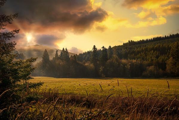 Fall morning break
