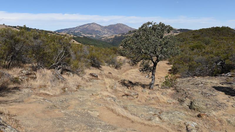 Morgan Territory Preserve
