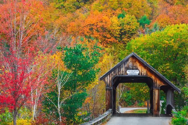 New Hampshire Dream