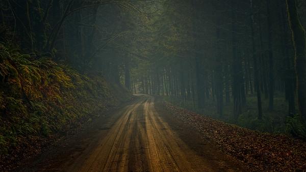 Escape Road