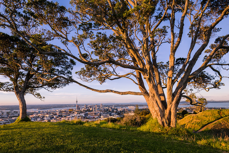 Last night's sunset from the top of Mount Eden. I know this composition has been done to death but it just felt right ;-)