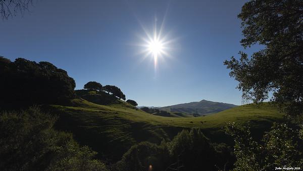 Morning, Vargas Plateau